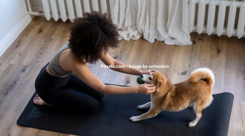 11 tips til at finde det rigtige yogaudstyr